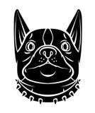 Dog Head Royalty Free Stock Photography
