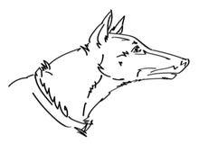 Dog head vector illustration