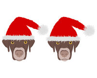 Dog heads with red santa claus caps Stock Photography