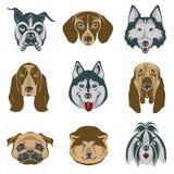 Dog heads set Royalty Free Stock Photography