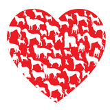 Dog in heart. Dog isolate in red heart form Stock Image