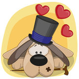 Dog with hearts Royalty Free Stock Images