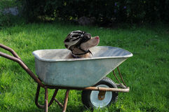 Dog with helmet and goggles sitting in a pushcart Royalty Free Stock Photo