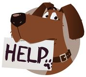Dog with help sign Royalty Free Stock Photos