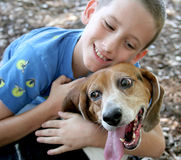 Dog and Her Boy. A beagle enjoying a hug from an adorable little boy.  Focus on dog's face Royalty Free Stock Photo