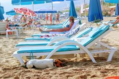 The dog hides in the shade of a lounger on a Turkish beach Stock Images