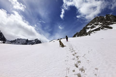 Dog and hikers in snow mountain at sun day Royalty Free Stock Photos