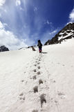 Dog and hikers in snow mountain at sun day Stock Photography