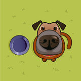 Dog with his Dog Bowl Royalty Free Stock Photography