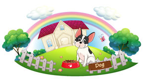 A dog and his dog food in front of a house Royalty Free Stock Photos