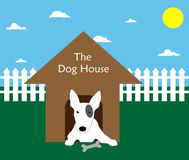 Dog in his House. Engish Bull Terrier dog puppy in his dog kennel in the back garden / yard Stock Photo