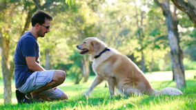 Dog and his owner in the park. Doing shake stock footage