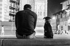 Dog and his owner waiting in Florence. Man and his dog resting on bench at night, best friends Royalty Free Stock Images