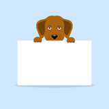 Dog holding a banner Stock Photography