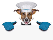 Dog cook chef banner Stock Photos