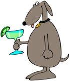 Dog holding a Margarita. This illustration depicts a brown dog holding a large Margarita Stock Photos