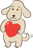 Dog holds in paws gift-heart Royalty Free Stock Photo
