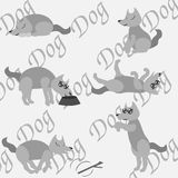 A dog at home. A dog posing at grey background with the word DOG royalty free illustration