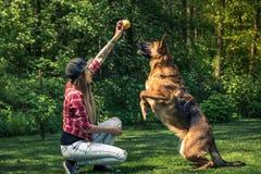 Dog hoppar för bollen, kamratskap med ägaren Arkivbild