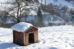 Dog house. In sunlight winter Royalty Free Stock Photography
