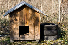 Dog house Stock Images