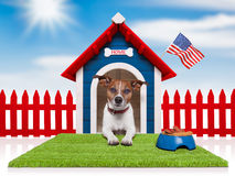 Dog house. With american flag and bowl full of food Royalty Free Stock Photos