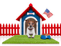 Dog house stock image