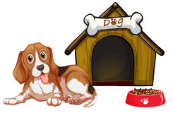 Dog and house Stock Images