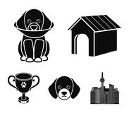 Dog house, protective collar, dog muzzle, cup. Dog set collection icons in black style vector symbol stock illustration.  Royalty Free Stock Image