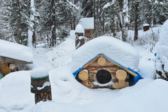Dog house in the winter with snow on roof. stock image