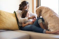 Dog with human family at home. Golden Retriever Junior dog with her human family at home Stock Photo