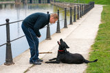 Dog listening to his master. Man instructing dog to fetch a stick Royalty Free Stock Photo