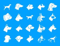 Dog icon blue set vector. Dog icon set. Simple set of dog vector icons for web design isolated on blue background Royalty Free Stock Image