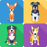Dog icon flat design Stock Photography