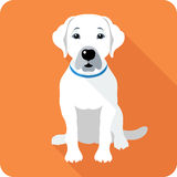 Dog icon flat design Royalty Free Stock Photography
