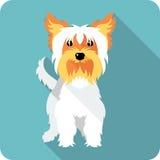Dog icon flat design Stock Photos