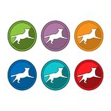 Dog icon set, Colorful dogs. EPS file available. see more images related vector illustration