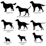 Dog icon set. Gun dogs  illustration. Silhouette Collection of gundog Royalty Free Stock Photography