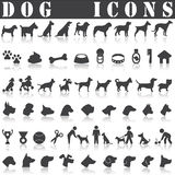 Dog icon set. On White background. Vector illustration Stock Photography