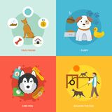 Dog Icons Flat Set. Dog design concept set with true friend puppy care flat icons isolated vector illustration Stock Photos