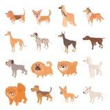 Dog icons set, cartoon style Stock Photos
