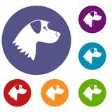 Dog icons set Royalty Free Stock Images