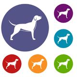 Dog icons set Stock Photography