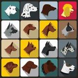 Dog Icons set, flat style Stock Photos