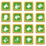 Dog icons set green Stock Image