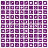 100 dog icons set grunge purple. 100 dog icons set in grunge style purple color isolated on white background vector illustration Stock Image