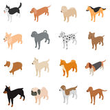 Dog icons set, isometric 3d style Royalty Free Stock Photo