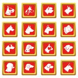 Dog icons set red Royalty Free Stock Photo