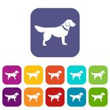 Dog icons set Royalty Free Stock Photography