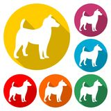 Dog Icons set - vector Illustration icon vector illustration